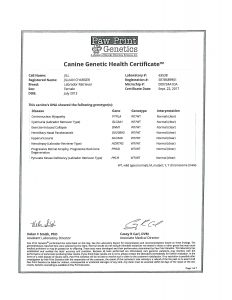 JILL GENETIC HEALTH CERTIFICATE