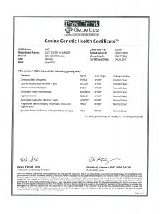 LUCY GENETIC HEALTH CERTIFICATE